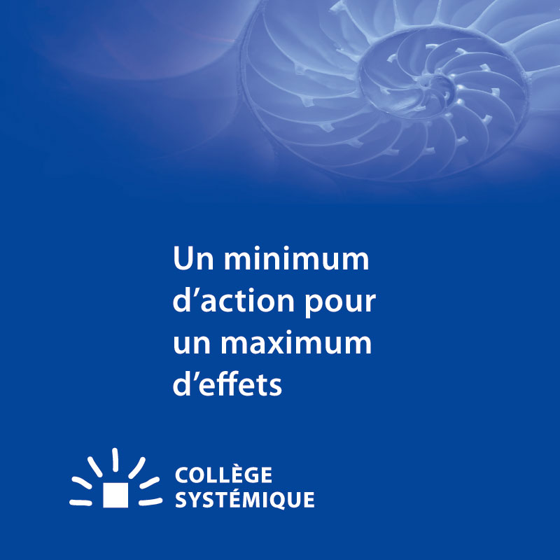 Collège Romand | Brochure p21
