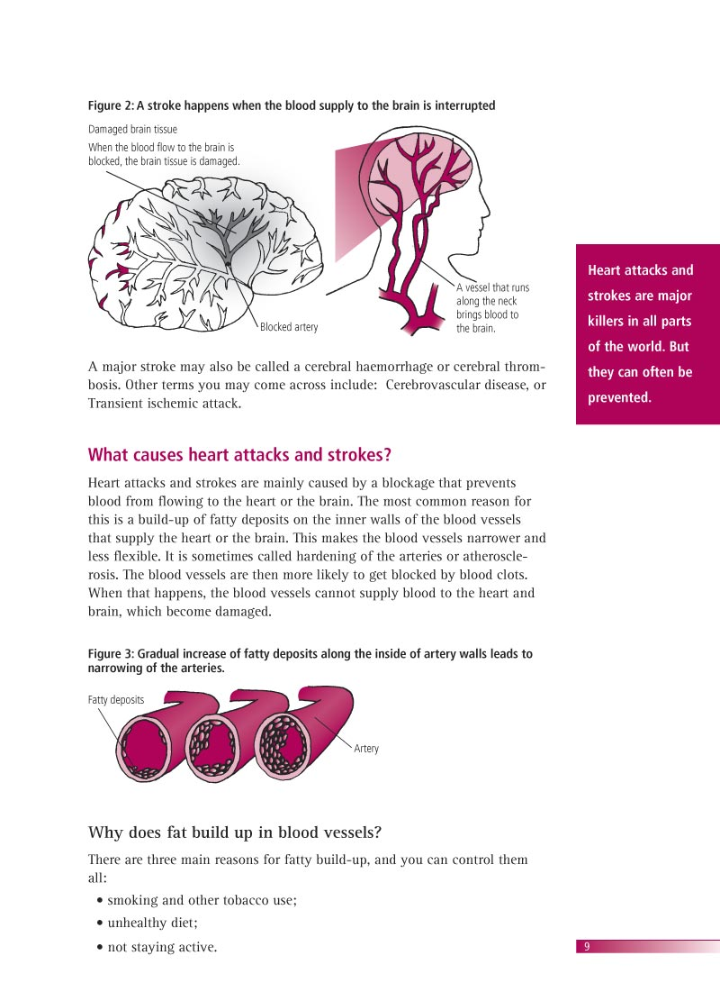 Avoiding heart attacks and strokes | Brochure p 11